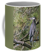 Feathers  Coffee Mug