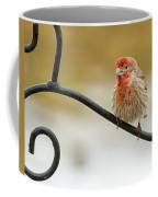 Feathers Ruffled Coffee Mug