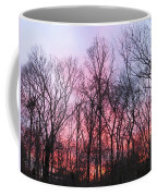 February At Twilight Coffee Mug