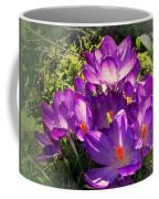 February Crocus Coffee Mug