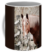 February Horse Portrait Coffee Mug