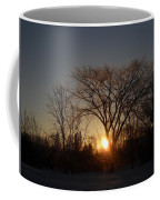 February Sunrise Behind Elm Tree Coffee Mug