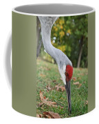 Feeding Coffee Mug
