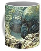 Feeding Sea Turtle Coffee Mug