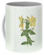 Feel-fetch - Hypericum Quartinianum Coffee Mug