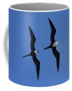 Female And Juvenile Magificent Frigatebird Fregata Magnificens 2 Coffee Mug