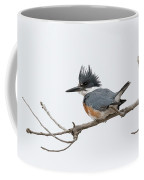 Female Belted Kingfisher On A Cloudy Day Coffee Mug