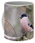 Female Bullfinch Coffee Mug