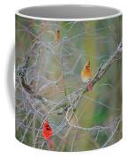 Female Cardinal And Friends Coffee Mug