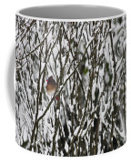 Female Cardinal In The Snow Coffee Mug