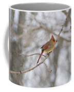 Female Cardinal In Winter Coffee Mug