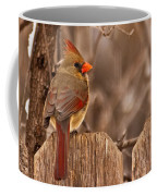 Female Cardinal On The Fence Coffee Mug