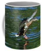 Female Duck Landing Coffee Mug