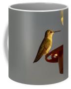 Female Hummingbird Coffee Mug