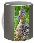 Female Mallard Duck Close Up Coffee Mug
