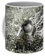 Female Mallard Duck Resting 2 Coffee Mug
