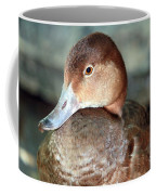 Female Redhead Duck Coffee Mug