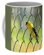 Fence And Feathers Coffee Mug