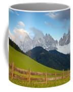 Fence At Val Di Funne Coffee Mug