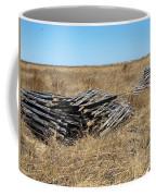 Fence Bails Coffee Mug