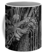 Fence In The Tropics Coffee Mug