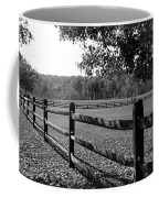 Fence Perspective Coffee Mug