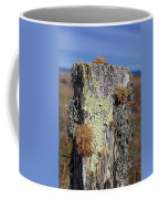 Fence Post Encrusted With Lichen  Coffee Mug