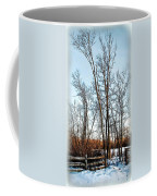 Fenced In Landscape Coffee Mug