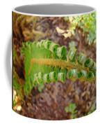 Fern Branch Leaves Art Prints Forest Ferns Natures Baslee Troutman Coffee Mug
