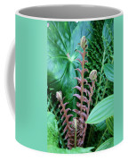 Fern Folly Coffee Mug