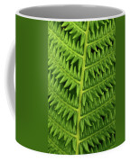 Fern Frond Coffee Mug