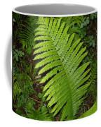Fern Leaf In June Coffee Mug