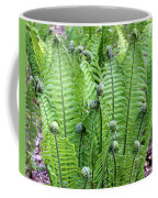 Fern Meet And Greet Coffee Mug