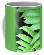 Fern Tips - Digital Painting Coffee Mug