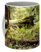 Fern Valley Coffee Mug