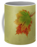 Feuilles D'automne I / Fall Leaves I Coffee Mug