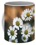 Feverfew Plant Coffee Mug