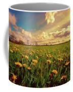 Field Of Dandelions At Sunset Coffee Mug