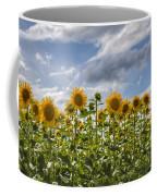 Field Of Dreams Panorama Coffee Mug