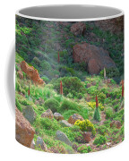 Field Of Echium Wildpretii In The Teide National Park Coffee Mug