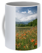 Field Of Orange Daylilies Coffee Mug