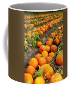 Field Of Pumpkins Card Coffee Mug