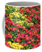 Field Of Red And Yellow Flowers Coffee Mug