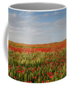 Field Of Red Poppy Anemones Late In Spring  Coffee Mug