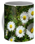 Field Of White Daisy Flowers Art Prints Summer Coffee Mug