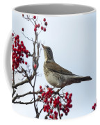 Fieldfare - 2 Coffee Mug