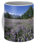 Fields Of Lupine And Owl Clover Coffee Mug