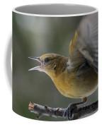Fiesty Oriole Coffee Mug