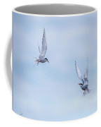 Fighting Terns Coffee Mug