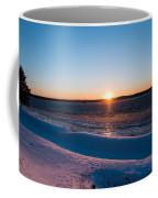 Fighting The Ice Coffee Mug